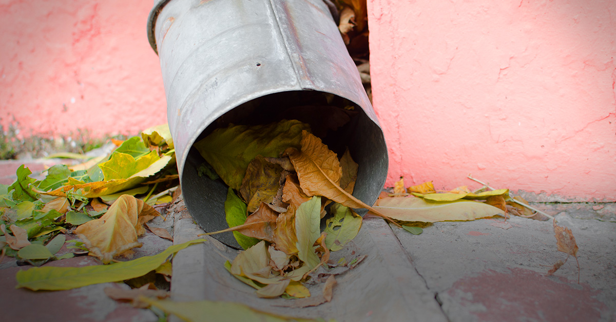 How To Unclog A Gutter Downspout