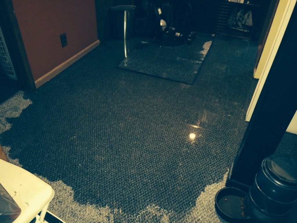 Prevent Water In Your Basement Tips To Stop Leaks And Waterproof - Basement keeps flooding