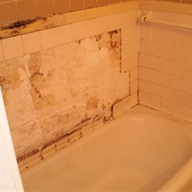 Bathroom with damaged tile
