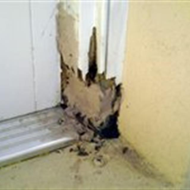 Whether you are looking to repair or replace a door - Mr. Handyman can help. With the rain and moisture in Florida it is very common to have rotted door jambs. Our experienced technicians can repair or replace your door jambs. We can also replace the entire door and frame. We are also skilled at interior door repairs. If you have a bi-fold door that is giving your trouble or a pocket door that is not functioning we can help. If you want to install French Doors or replace a sliding glass door with a French Door Mr. Handyman can help. #doors #handyman #mrhandyman4805