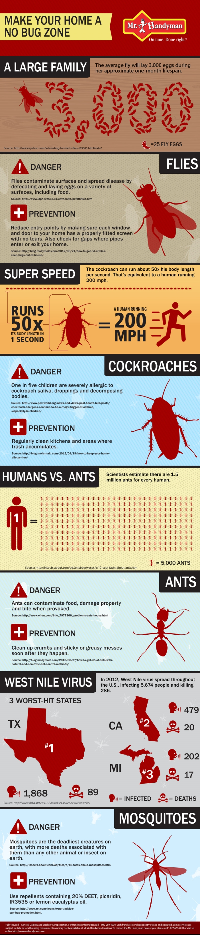 make your home a bug free zone infographic