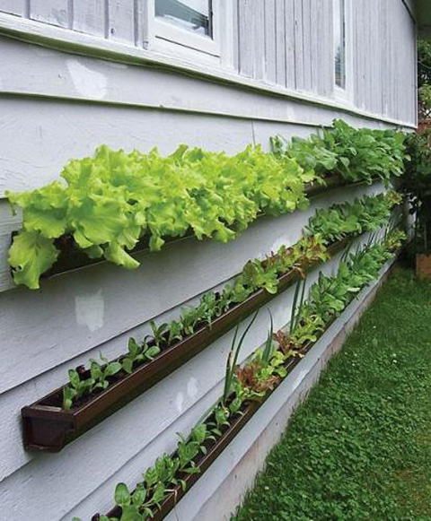 rain gutter planter boxes DIY craft